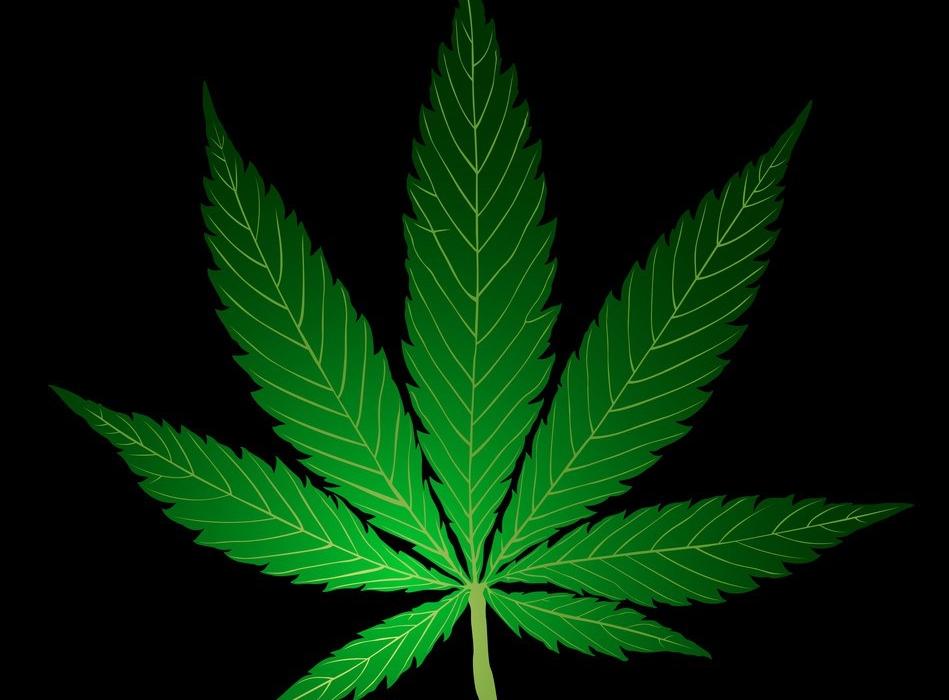 Картинки с листьями марихуаны как влияет марихуана на потенцию у мужчин